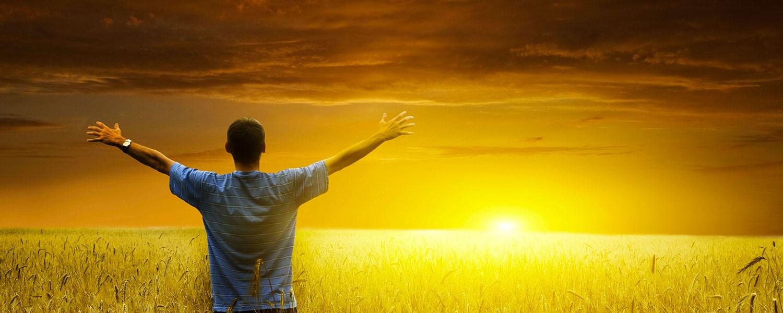 Immagine che rappresenta uomo su campo di grano che guarda al tramonto. risponde alla domanda: Mi sento libero di vivere felice? Volgo lo sguardo alla bellezza dell